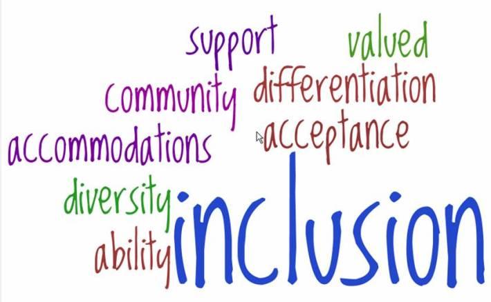 Inclusion visual